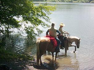 Wanderreiten badende Pferde