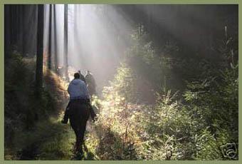 wanderreiten auf geheimen pfaden