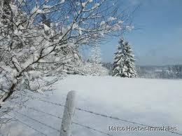 Wandern und Reiten im winterlichen Westerwald